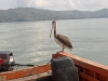 port-santa-fe-4