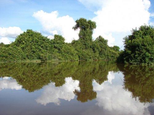 weneart2a rzeka
