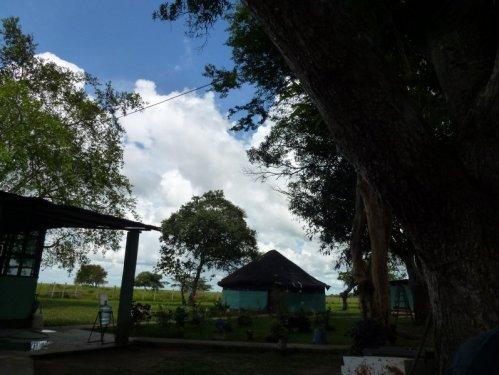 weneart2 obóz