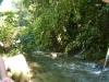 rzeka w Henri Pittier Park