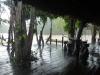 weneart5 Deszcz w Orinoco Eco Camp